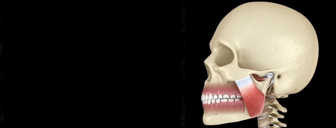 fizjoterapia stomatologiczna mięśnie